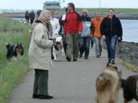 American Collie kenneldag 2007