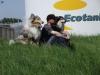 American Collie, Dutchamco's kenneldag 2011